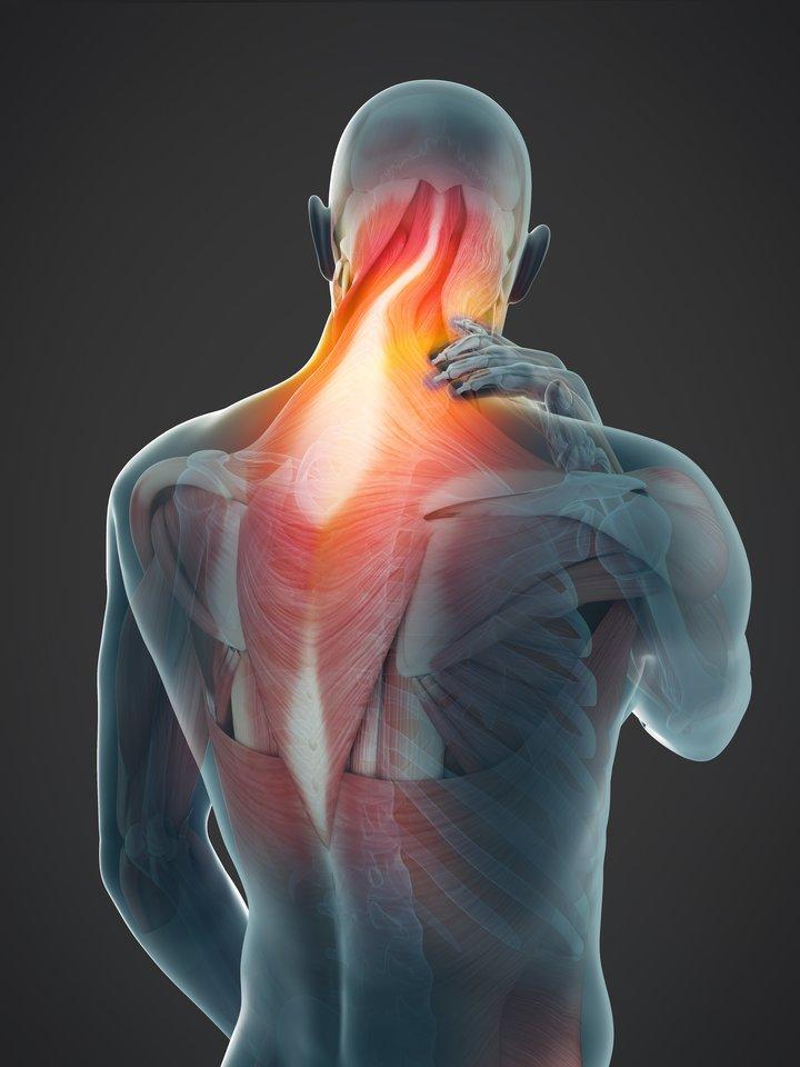 gydymas sąnarių ir raumenų