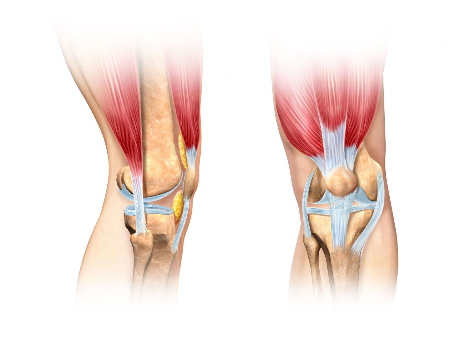 uždegimas nuo peties sąnario gydymo raumenų tabletės skausmas arkoxy sąnarių