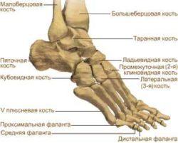 artrozė kulkšnies po lūžio gydymo