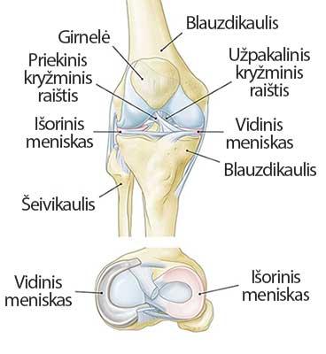 tabletes nuo sąnarių skausmo kaina skausmas kojų sąnarių kai vaikščioti priežastis
